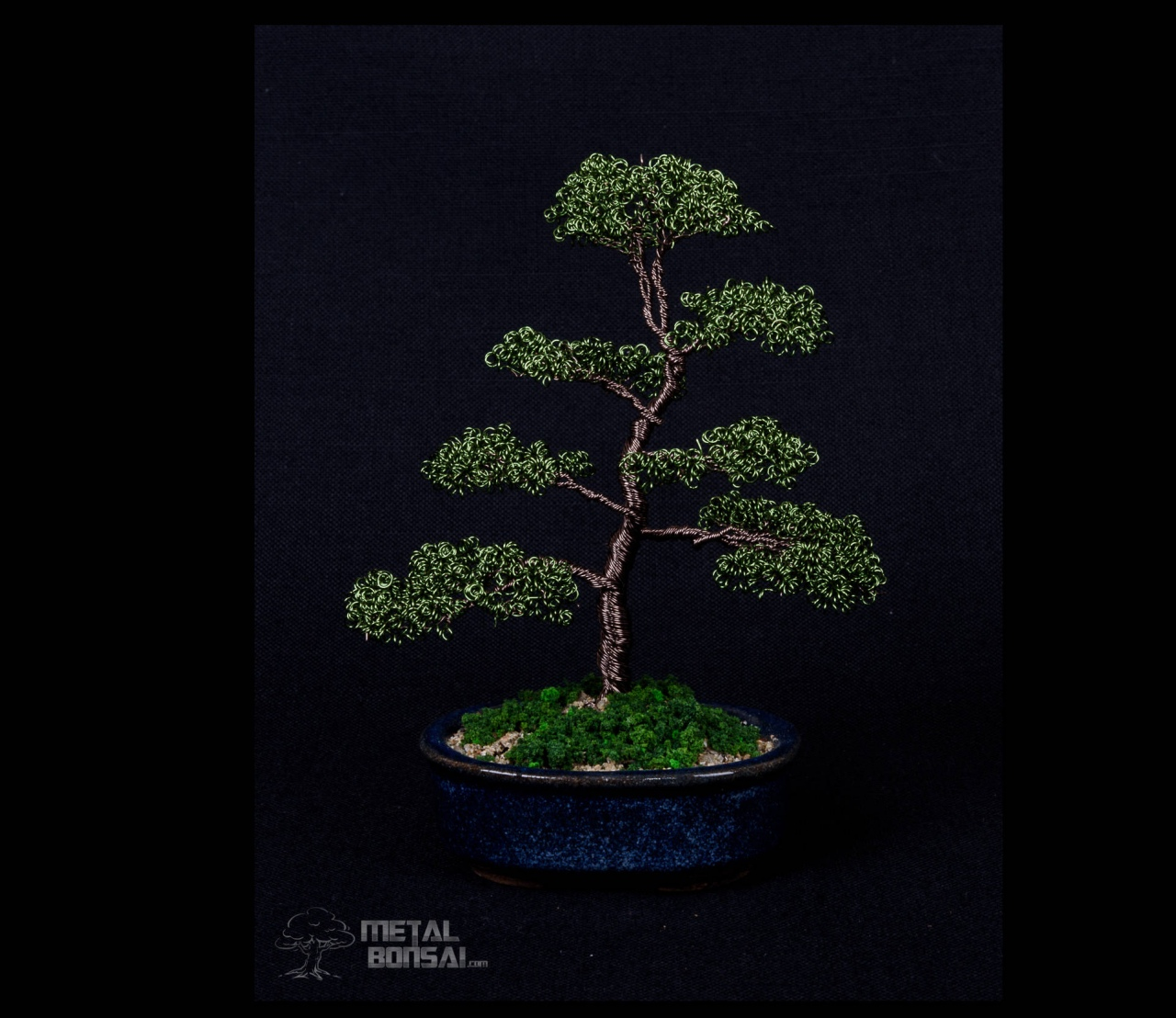 Outstanding How To Make Wire Bonsai Tree Sculpture Lorenzo Sculptures Wiring Cloud Hisonuggs Outletorg
